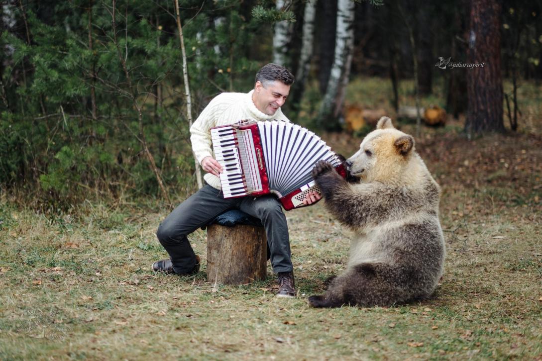 мыжчина играет на аккордионе медведю