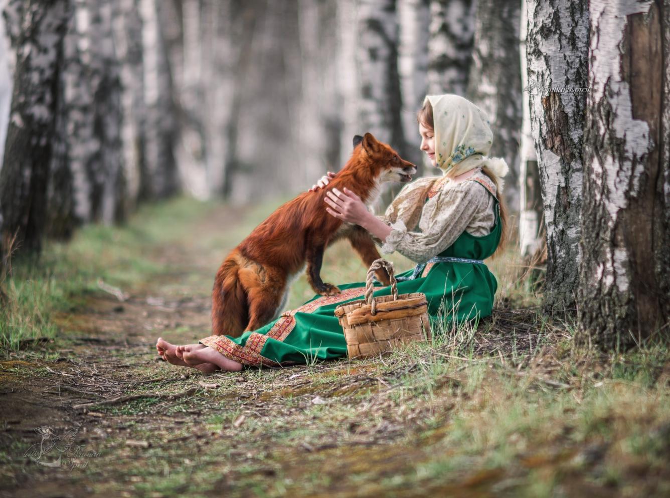 Девочка с лисой в березовой аллее