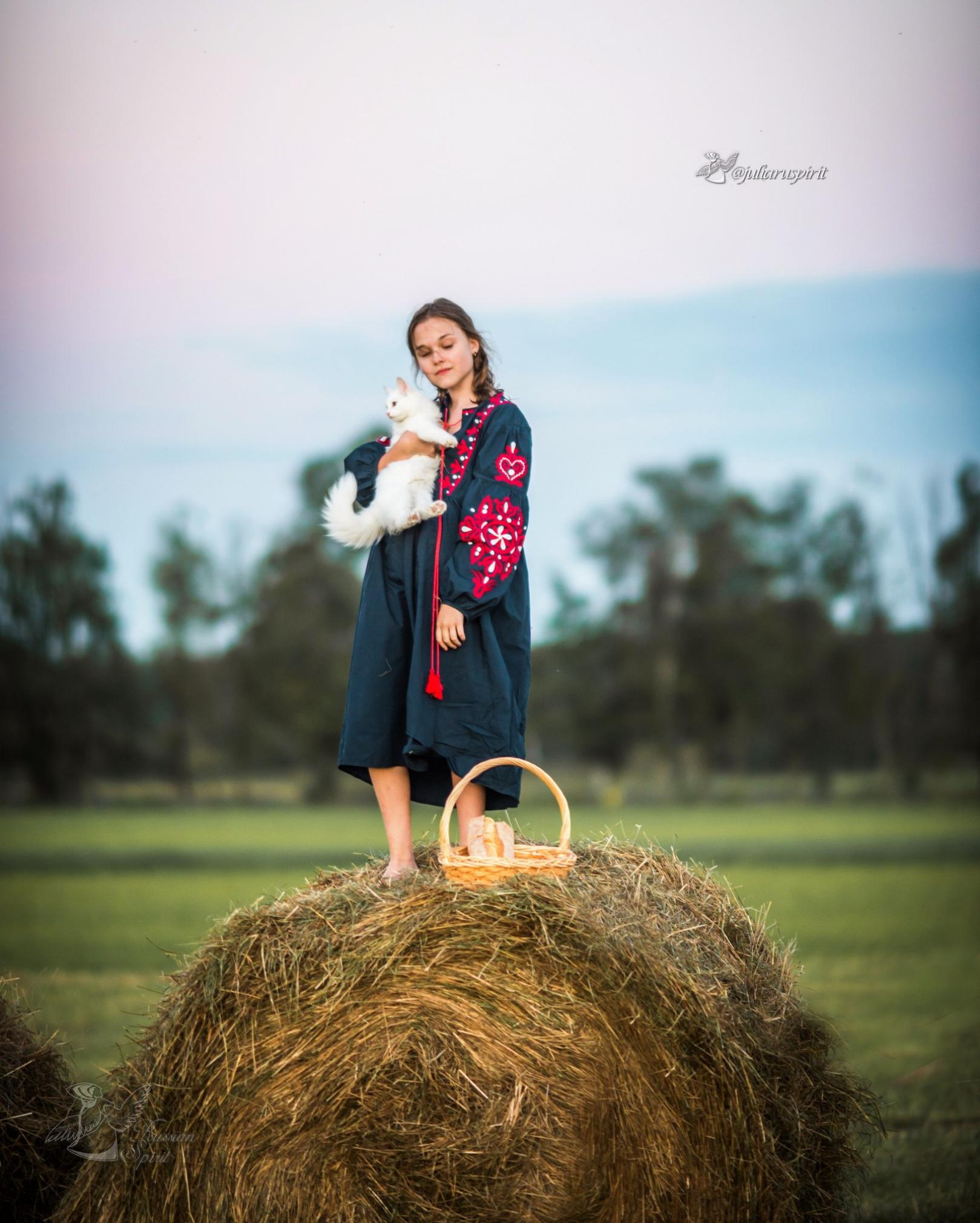 девочка на стоге сена в национальном синем платье