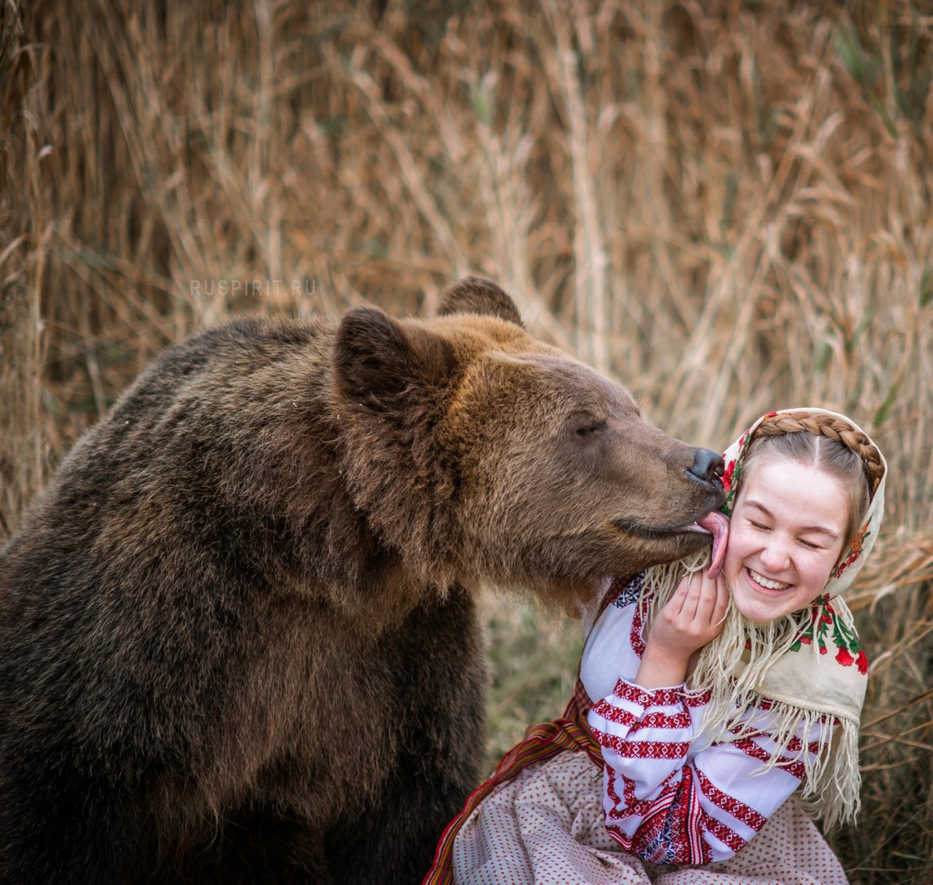 поцелуй медведя Тома